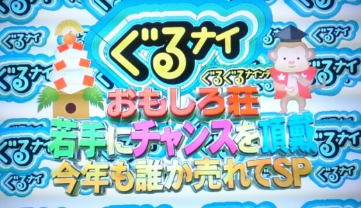 【動画有り!!】ぐるナイおもしろ荘2019感想!!優勝はペコパ!ブレイク芸人を出演者から先取せよ!!